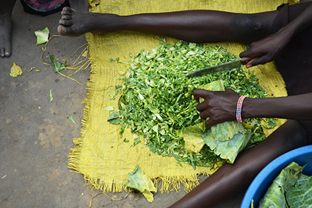 Juba, South Sudan, February 2017. Young woman cutting cabbage at a salesian camp for internally displaced persons (IDPs). Aerial perspective. Captured during civil war. Adriana Mahdalova (Shutterstock)